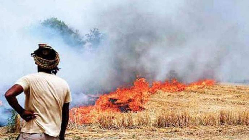 पंजाब में पराली जलाने के मामले 45 फीसदी बढ़े: रिमोट सेंटर के आंकड़े