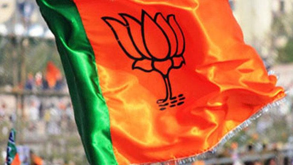 झारखंड: गढ़वा विधानसभा में हैं बीजेपी के कई दावेदार, सभी को है टिकट मिलने की उम्मीद
