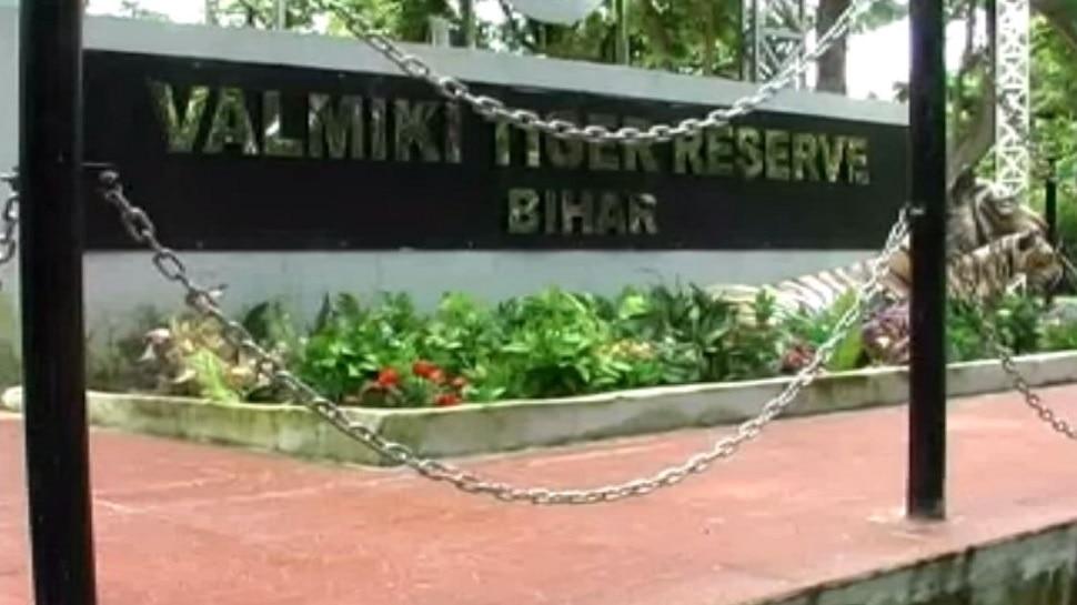 बगहा: वाल्मीकि टाइगर पार्क में पर्यटकों के लिए शुरू की गई कई सेवा
