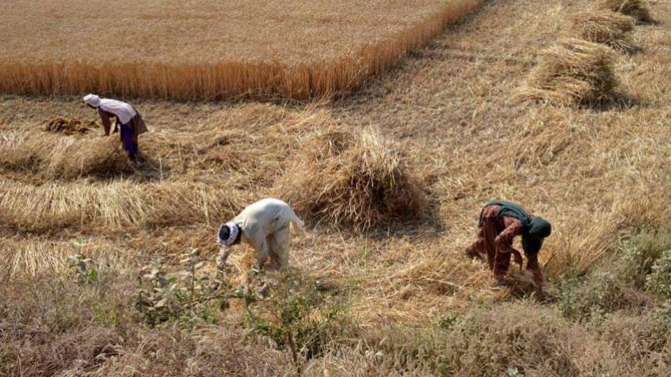 जयपुर: फर्जी किसान बने कर्मचारियों के खिलाफ हो सकती कार्रवाई, इंटेलीजेंस पुलिस ने लिखा पत्र