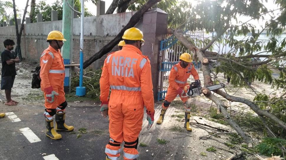 चक्रवाती तूफान 'बुलबुल', पश्चिम बंगाल में कई जगह टूटे पेड़, ओडिशा में एक की मौत