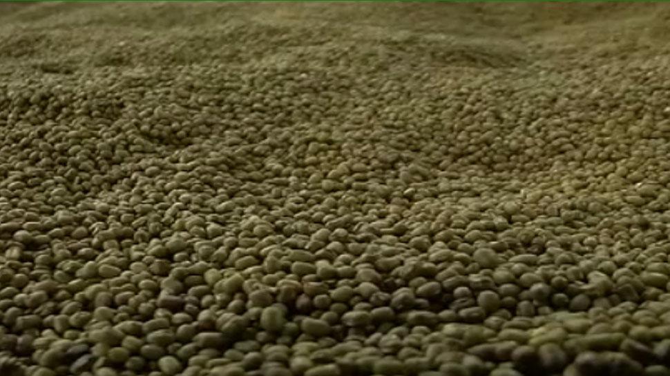 जोधपुर: मंडी में मूंग की तुलाई न होने पर किसानों ने किया हंगामा