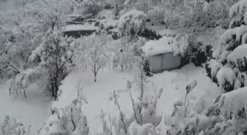 हिमाचल में भीषण बर्फबारी के साथ बारिश भी हुई तेज, मौसम विभाग ने जारी किया अलर्ट