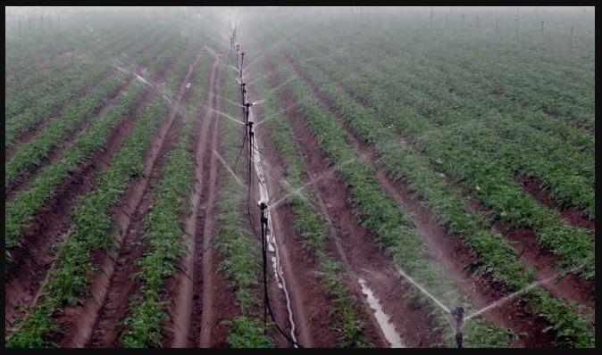 घाटी का यह ड्रीम प्रोजेक्ट जो किसानों दे रहा जल संरक्षण का संदेश
