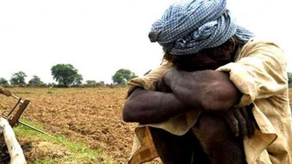 बाड़मेर के किसानों को रुला रहा पाकिस्तान से आया इन दुश्मनों का समूह!