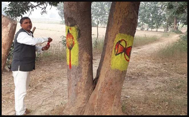 भारत का ट्रीमैन जिसने पेड़ों की कटाई रोकने का खोज निकाला देसी फॉर्मूला