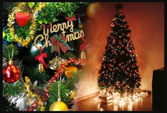दुनियाभर में क्रिसमस की धूम! लोगों पर चढ़ा 'क्रिसमस फीवर'