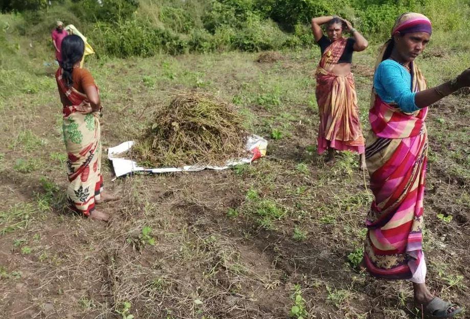 मराठवाड़ाः गर्भाशय निकलवा कर मजदूरी कर रही हैं महिलाएं, मंत्री ने लिखा पत्र