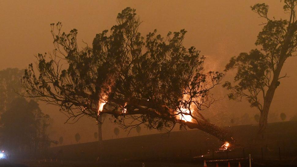 मेलबर्न में जंगल की आग से गहरा हुआ धुंआ, ऑस्ट्रेलियन ओपन पर पड़ा असर