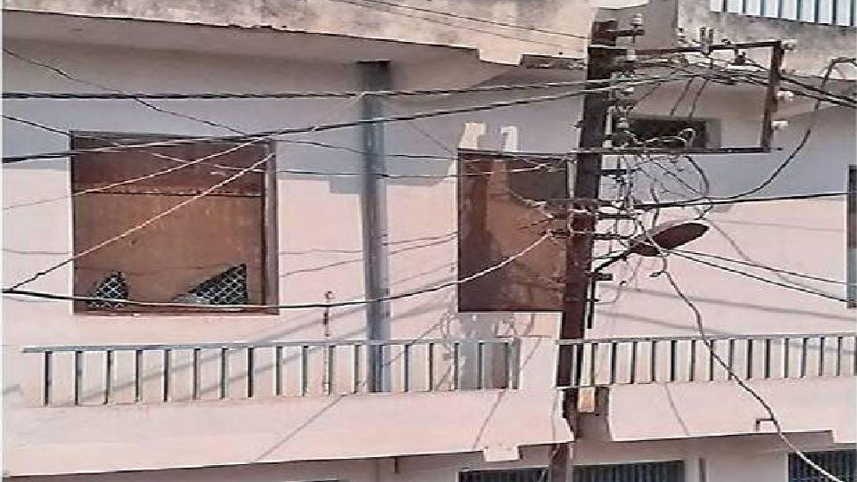 छपरा: बिजली तार की वजह से खतरे में पड़ा पेड़-जीवन, ग्रामीणों ने रूकवाया काम