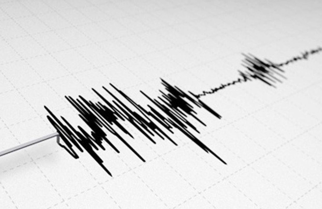 तुर्की में भूकंप से डोली धरती, 14 लोगों की मौत