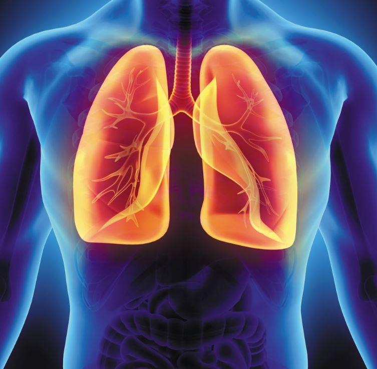 Lungs had become enemies in lungs, corrected by operation | फेफड़े में  फेफड़ा बन गया था जानी दुश्मन, ऑपरेशन से हुआ ठीक | Hindi News, खबरें हट के