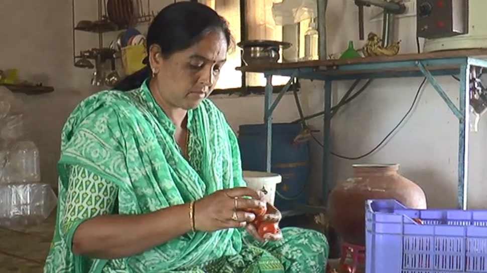 निराश लोगों के लिए मिसाल हैं ये महिला, अकेले दम पर बंजर खेत को बनाया उपजाऊ