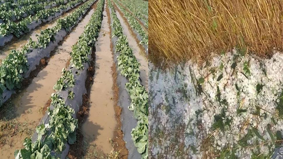 CM भूपेश बघेल का कलेक्टरों को निर्देश: ओलावृष्टि से किसानों को हुए नुकसान का सर्वे कर जल्द दें मुआवजा