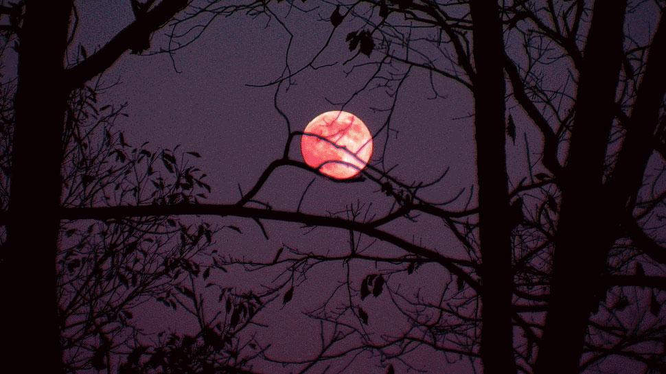 'बुद्ध पूर्णिमा' पर दुनिया ने देखा Super Flower Moon का खूबसूरत नजारा