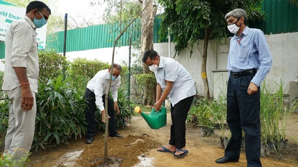 कोरोना से लड़ने के लिए दिल्ली सरकार फ्री में बांटेगी औषधीय पौधे, मिलेगा ये फायदा