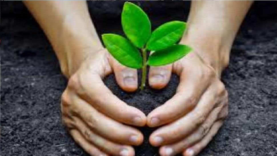 15 जुलाई से प्रदेश में चलेगा पौधारोपण अभियान, 30 लाख से ज्यादा पौधे लगाने का लक्ष्य