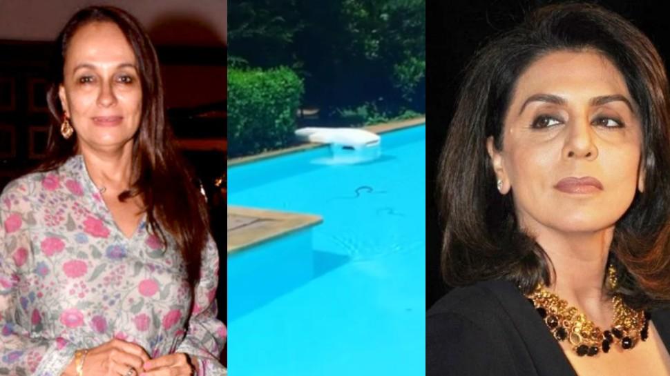 आलिया भट्ट की मां सोनी राजदान के स्वीमिंग पूल में घुसा सांप तो नीतू कपूर ने दिया ऐसा रिएक्शन