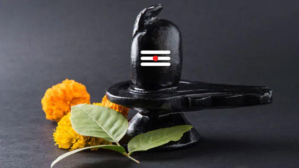 Sawan 2020: जानें सावन के महीने में किस शिवलिंग की पूजा से क्या मिलता है फल
