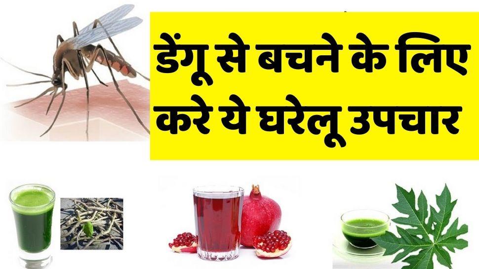 डेंगू जैसी खतरनाक बीमारी के लिए अपनाएं ये घरलू उपचार, जल्द मिलेगा फायदा