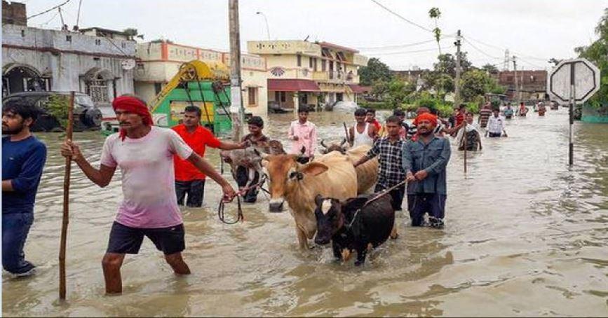 बाढ़ से बिहार के कई जिले बेहाल, 33 फीसदी फसल तबाह