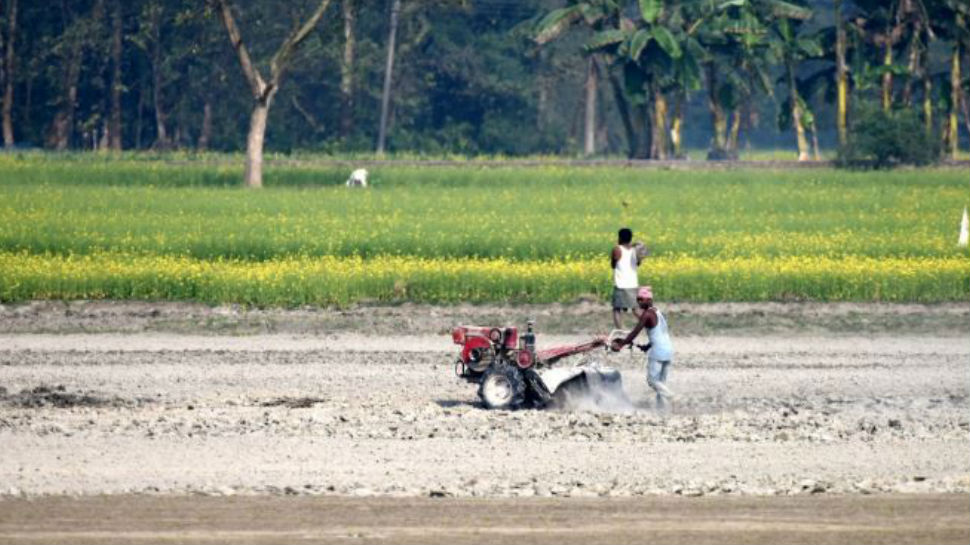 झारखंड में मॉनसून मेहरबान, खेतों में लहलहा फसल लेकिन किसान हैं परेशान!
