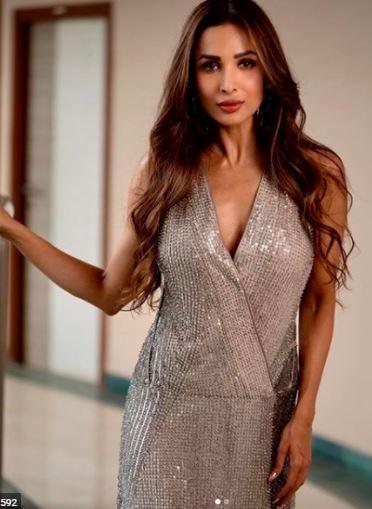 malaika arora in shimmery dress