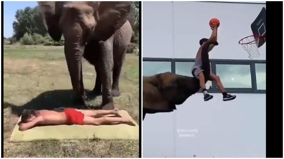Video: हाथी ने की शख्स की पीठ पर मालिश, गजब कारनामों के साथ किया हैरान