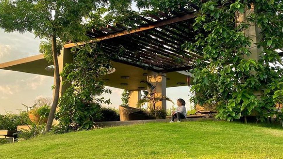 MS Dhoni Farm house 4