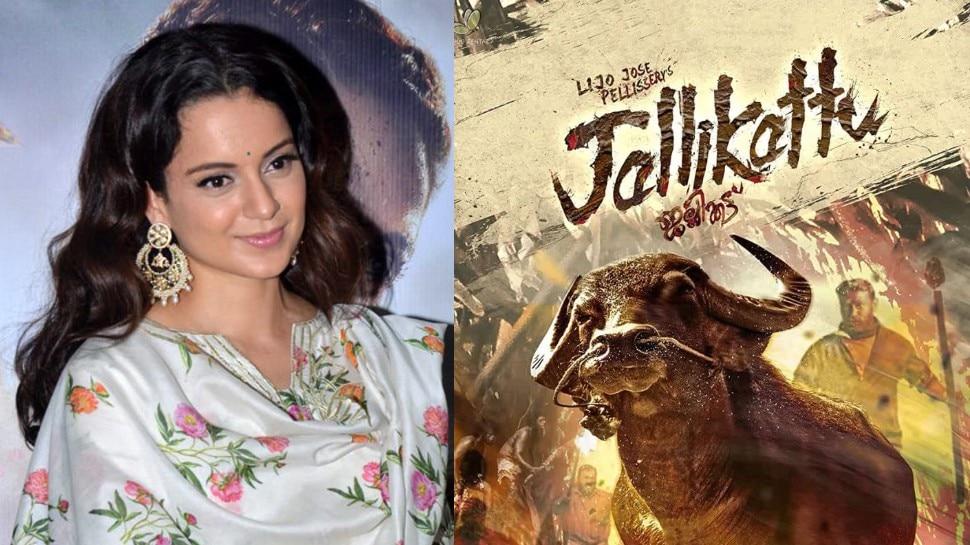 Oscar 2021 में Jallikattu की एंट्री पर Kangna ने बॉलीवुड पर कसा तंज, खूब सुनाई खरी-खोटी