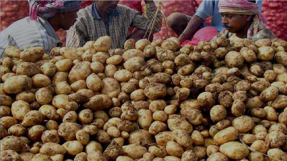यहां 50 रुपए प्रति किलो बिक रहा आलू अब 20 में, हरी सब्जियां भी सस्ती
