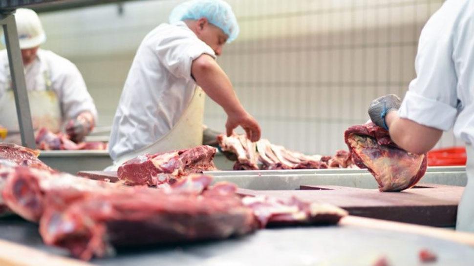 Ban on killing in halal and kosher ways