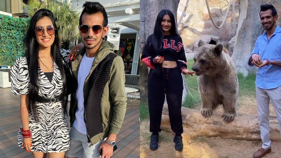 Honeymoon पर Yuzvendra Chahal और Dhanashree Verma बने 'खतरों के खिलाड़ी', भालू को कराया लंच
