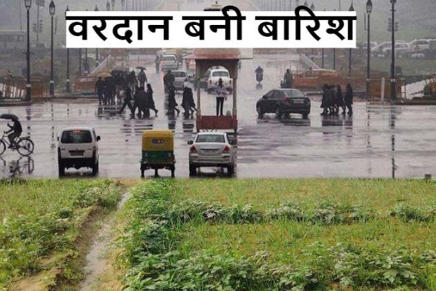 गेहूं-सरसों के लिए लाभदायक है बारिश, Delhi-NCR में 6 जनवरी तक भिगाएंगे बादल