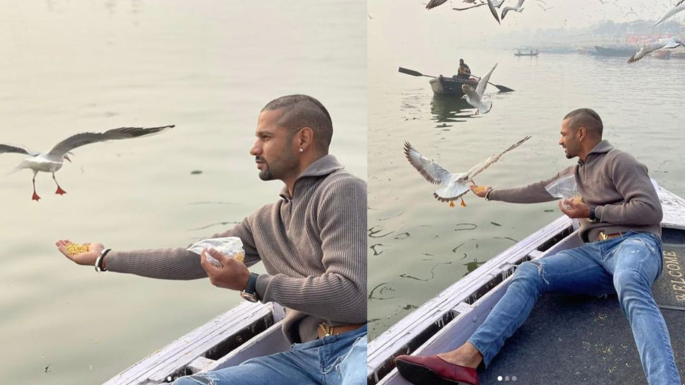 Varanasi में विदेशी पक्षियों को दाना खिलाकर बुरे फंसे Shikhar Dhawan, हो सकती है कार्रवाई