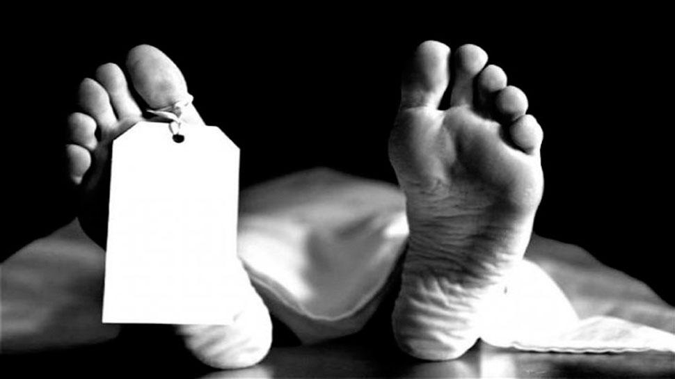 Gujarat: छोटे भाई ने काम करने से मना किया तो बड़े भाई ने पत्थर से मार-मारकर किया Murder