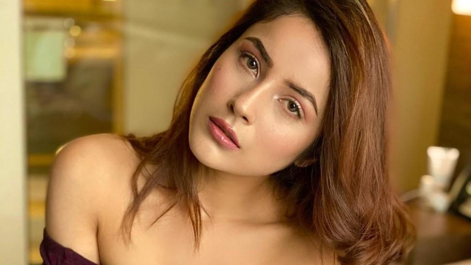 Shehnaaz Gill maroon look