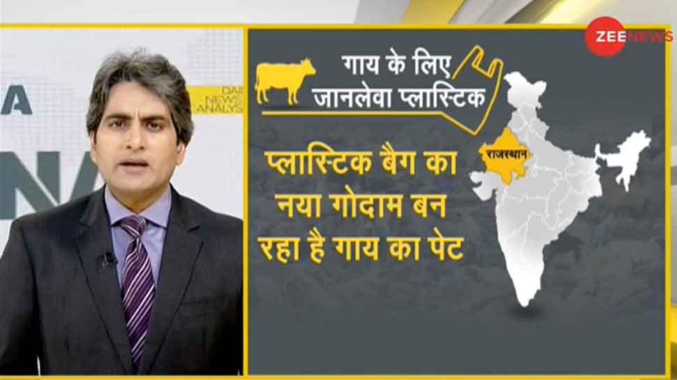 कूड़ा फेंकने की जानलेवा लापरवाही, जानिए कैसे प्लास्टिक का गोदाम बना गाय का पेट