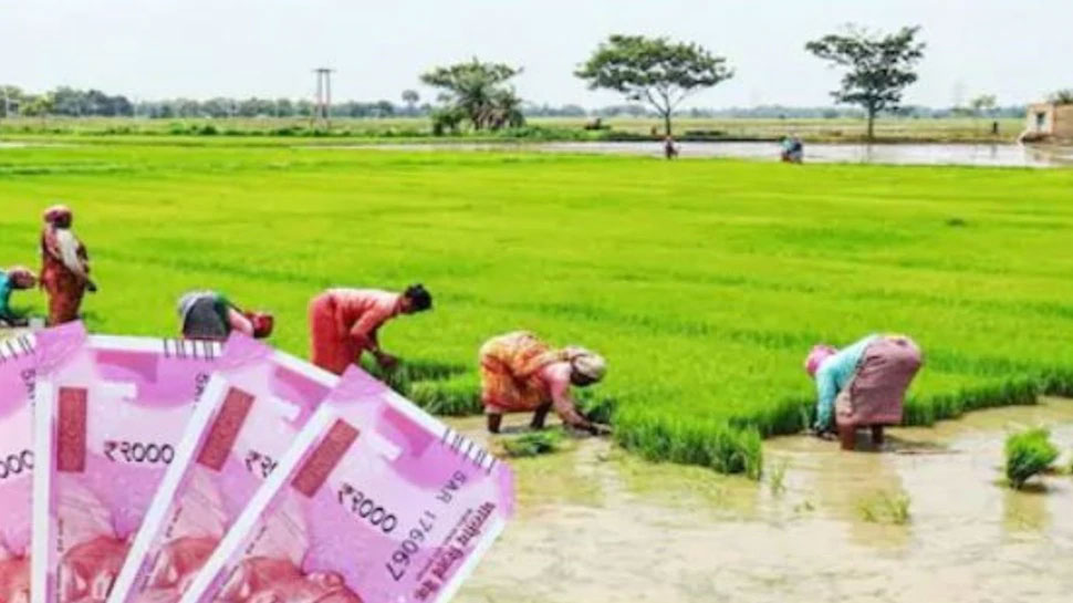 Action Against fake Farmers