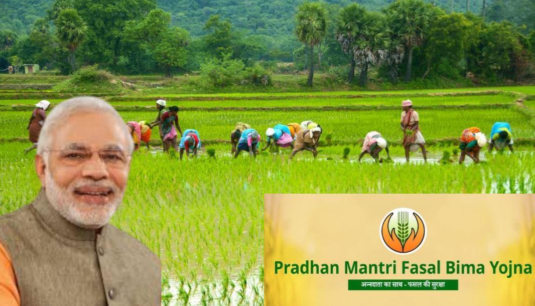 PM Fasal Beema Yojana: जानिए किसान कैसे पाएं फसल में हुए नुकसान का मुआवजा