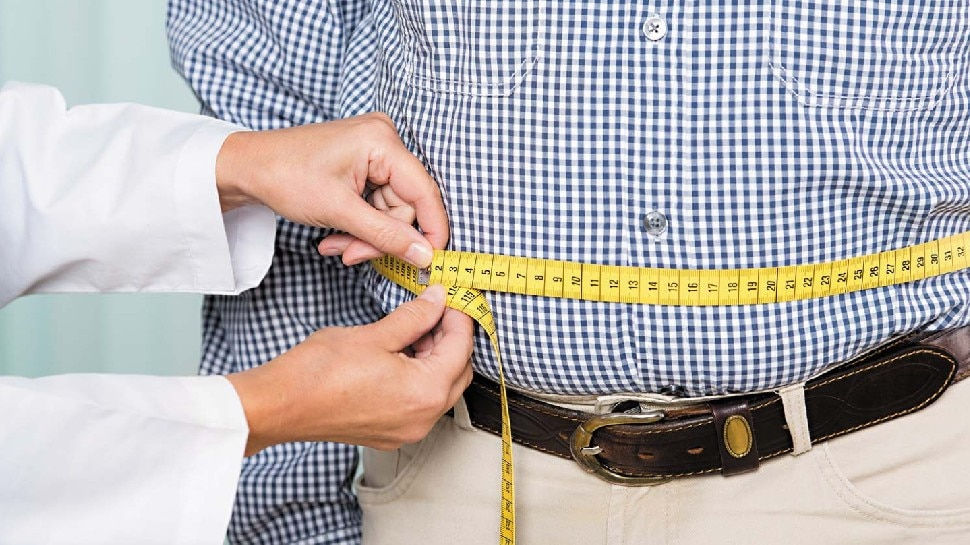 बिना एक्सरसाइज और डाइटिंग, ऐसे करें मोटापा कंट्रोल! बस इन चीजों का करें सेवन