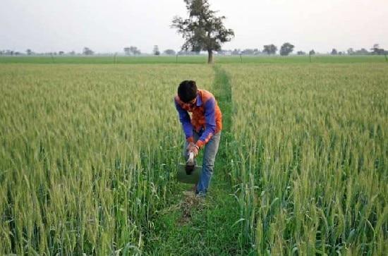 शिवराज सिंह सरकार ने किसानों को दी बड़ी राहत, फसल ऋण को लेकर किया ये बड़ा ऐलान
