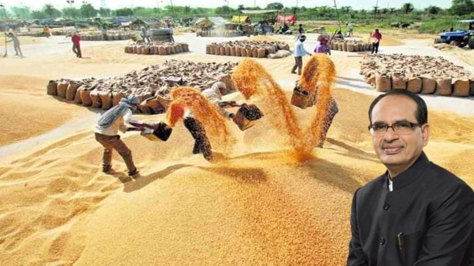 जरूरी खबरः फसल खरीदी को लेकर शिवराज सरकार का बड़ा फैसला, कृषि मंत्री ने किया ये ऐलान