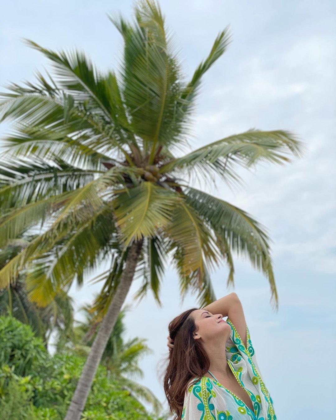 beach style of dia