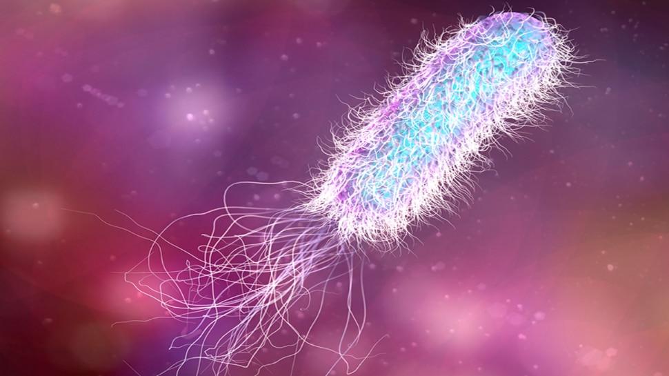 Life Science, Bacteria: बैक्टीरिया को लेकर हुई नई खोज, बदल सकती है की जीवन के शुरुआत की धारणा