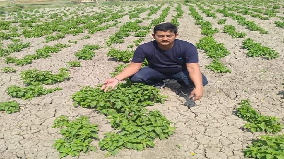 बिहार के किसान की खेती विदेशी बाजारों में छाई,1 किलो क्रॉप-हॉप सूट्स की 82,000 कीमत