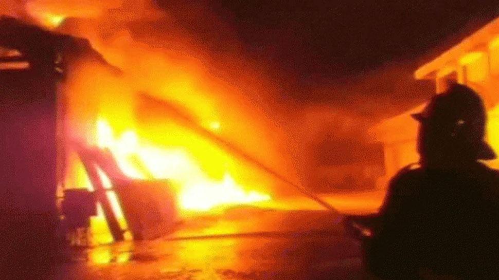 Germany के सूअर प्रजनन केंद्र में लगी आग,  जिंदा जल गए 55 हजार से ज्यादा पशु