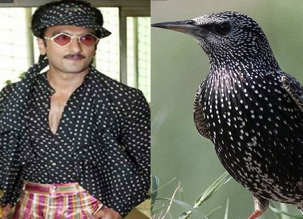 Ranveer Singhs outlandish Look