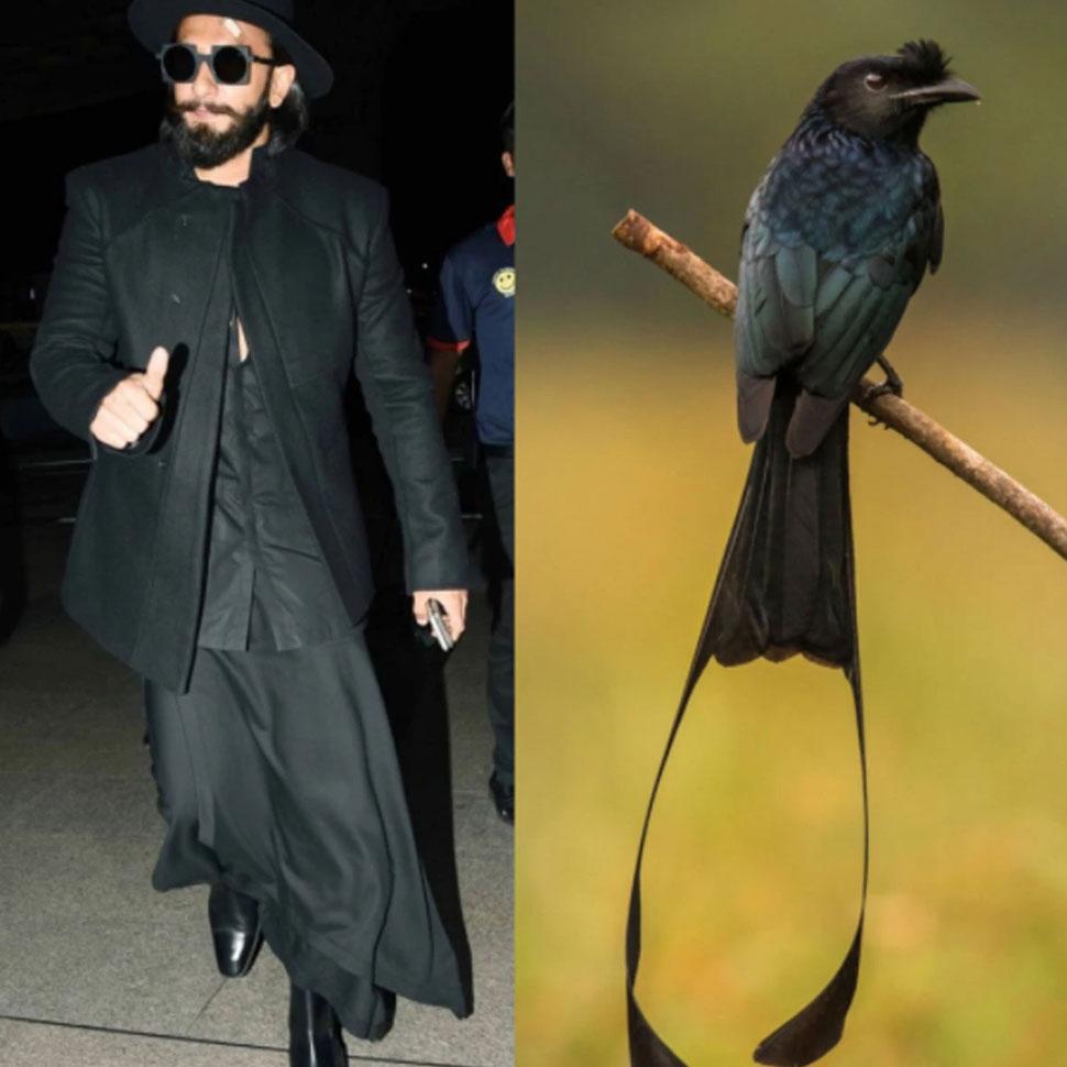 Ranveer Singhs fashion