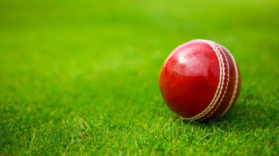 क्रिकेट जगत में शोक की लहर, 33 साल के क्रिकेटर Ashwin Yadav का हुआ निधन